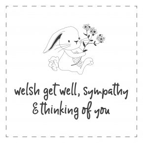 Welsh - Get Well, Sympathy & ToY