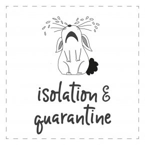 New! Isolation & Quarantine
